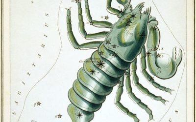 animalia stellarum scorpio